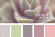 Colors / by Katie Matthews