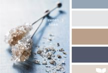 Paint Color and Ideas / by Courtney Cloe