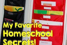 Homeschool Ideas / by Becky Shaw
