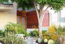 Indigenous gardens / Chanticleer Manor