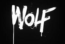 7.795 light years / Wolf359