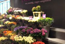 sprouts floral display ideas / by Celina Jones