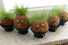travňaci - tráva