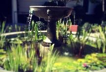 Garden fountains for all