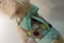 oblečenie pre psika