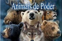 Animais de poder.
