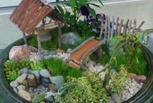Table top gardens / by Colleen VanLangen