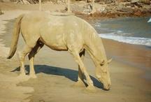 Sand / Sand