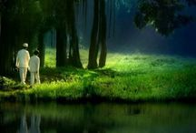 The play of light / by Stas Kalkaev