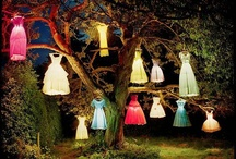 Tim Walker World