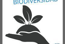 Biología Secundaria en México / Información para estudiantes y maestros de Biología en Secundaria