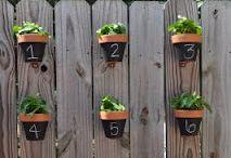 Garden and Outdoor Living Ideas