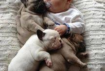Too much cuteness