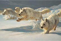 Fenrisulfr and wolves
