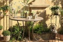 Garden / the secret garden ...