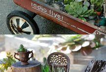 kert és növényzet