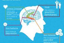 Infografías sobre la educación