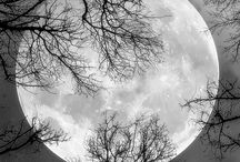 Natuur / Maan
