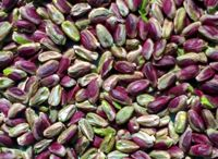 Greek shelled pistachios kernels