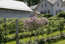 Martha Stewart's garden / farm / Oh Martha- you're so cleaver