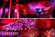 Wedding: Japanese inspired / All things fascinated by the Land of the sun