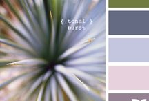 Color Schemes / by Melina Helgeson