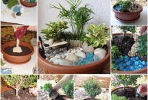 Mon jardin / Jardin, terrasse