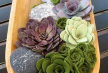 piante in feltro