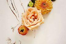 Cut Flowers / by Shannon Downey