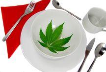 Przepisy kulinarne / Cannabis Cookbook Ambasadorki Polskie Przepisy konopne.