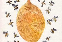 Bees / by Sydney Springer