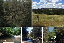 NSW campsites
