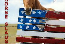 H.R. 113 — The SAFE Act / H.R. 113 is a federal bill pending before Congress that would ban the slaughter of U.S. horses at home and abroad.