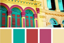 Color Craze / by Lori Blair