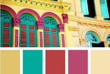 Color Craze / by Lori Blair