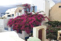 Greek Island Highlights