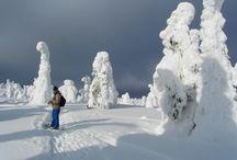 National Parks, Kuusamo & Posio /  National Parks in Northern Finland: Oulanka Kuusamo, Riisitunturi Posio, Hossa Suomusalmi/Kuusamo