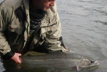 UMPQUA RIVER OREGON / Fly fishing the Umpqua River in Oregon.