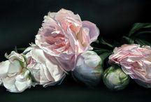 paintings flowers