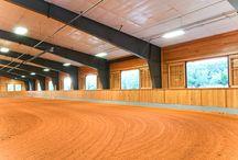 my dream dressage arenas