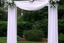 Wedding arches & Plact of registration / /