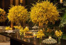 bodas de ouro decoracao