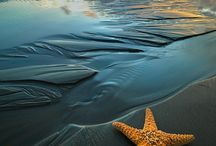 Water - Sky / Water: Oceans, Lakes, Rivers,... Sky: Sunrise, Sunset, Universe / by Ms. Kathleen