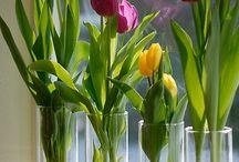 blomster i glas mm.