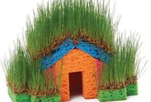 grass house for kids
