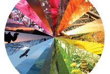 Färgtoncirkeln