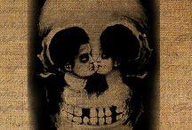 Skulls / by Aimie Harris