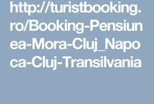 Pensiunea Mora Cluj Napoca