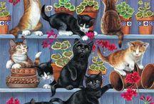 Poesen en katten!!!!!!