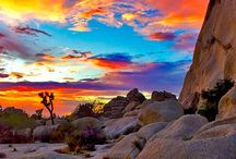 God's artwork / nature's beauty / by Donna Hyland